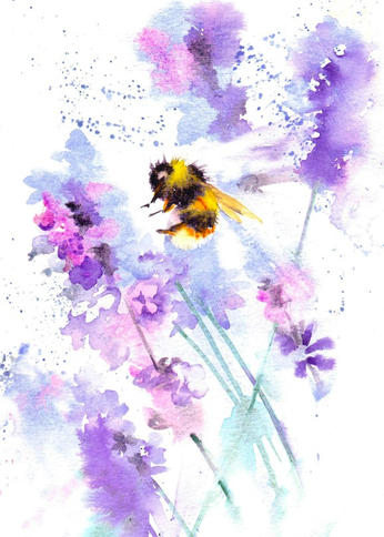 Bumblebee on lavender 2