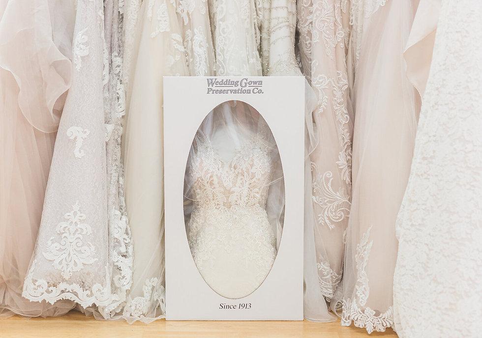 Gown%20Preservation%201_edited.jpg