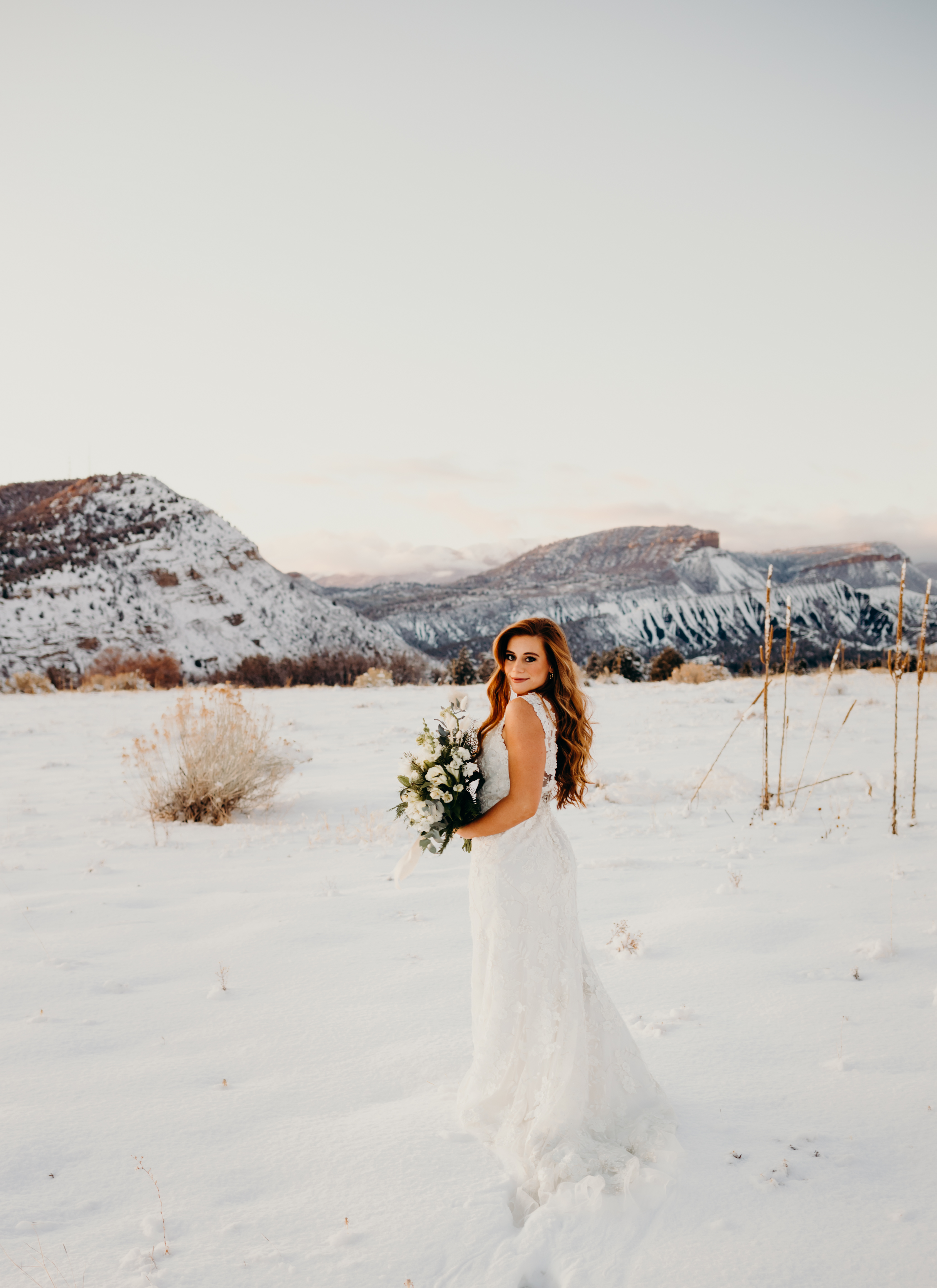 Timberline Photography