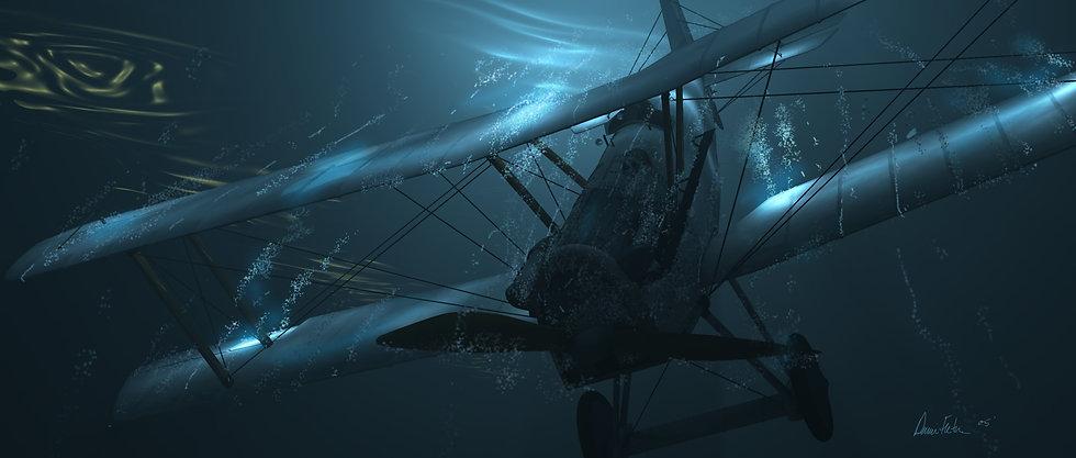 sinkingplanelarge.jpg