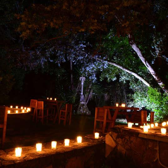 El Campirano Noche