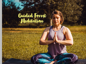 Forest Guided Meditation