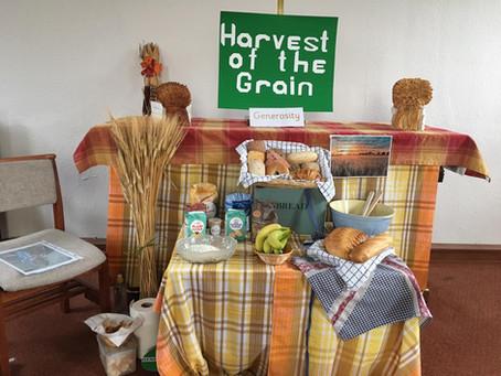 Experience Harvest