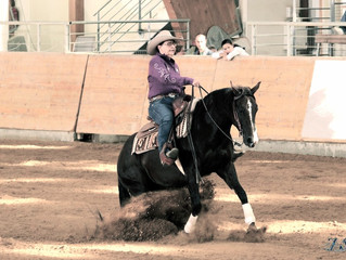 3 Nations'show @ HorseAcademy - Mooslargue