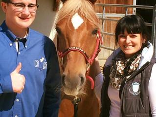 NRHA CH Swiss Slide @ Horse Academy, Mooslargue