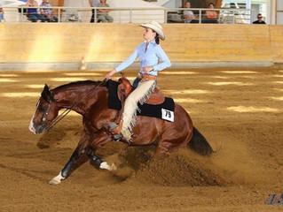 3 Nations'Show @ HorseAcademy - Mooslargue, FR