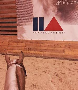 Trainingswoche @ Horse Academy, Mooslargue