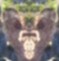 Untersberg-Felssturz-Herz-gespiegelt.jpg