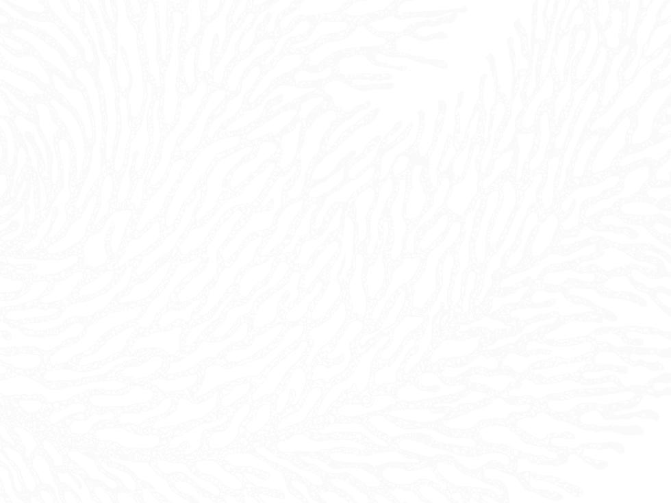 TEXTURE (1) (1)-min.png