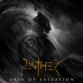 """Pain of Salvation – """"PANTHER"""" enters charts /  New drum playthrough video launched"""
