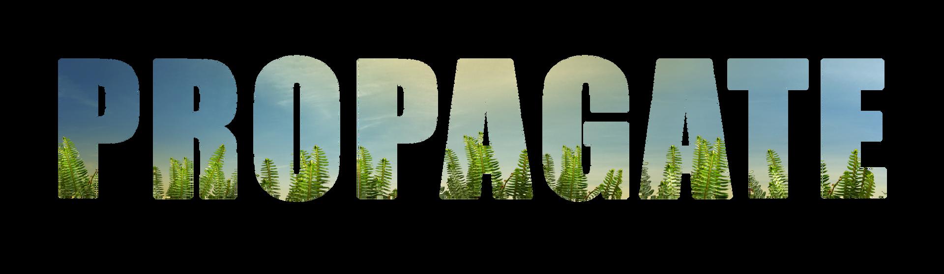 Propagate.png