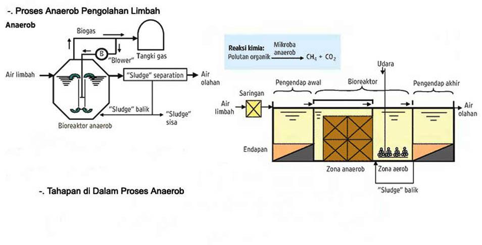 Proses anaerob dalam limbah.jpg
