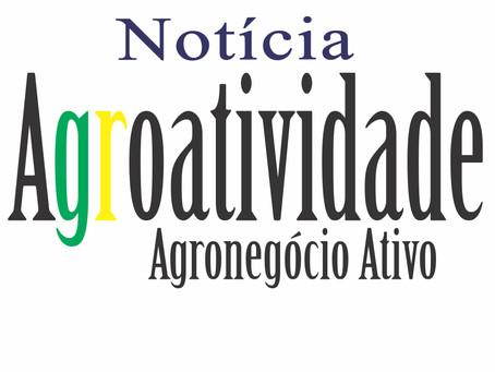 Agricultura propõe norma para o controle da qualidade de frutas e hortaliças