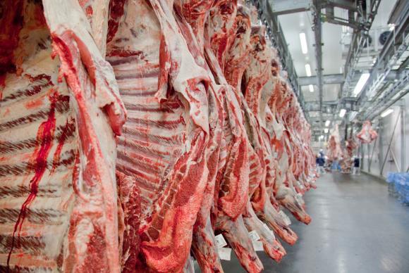 O Brasil tem hoje 215 milhões de cabeças de gado e produz 9,5 milhões de toneladas de carne bovina (Divulgação/Abiec)