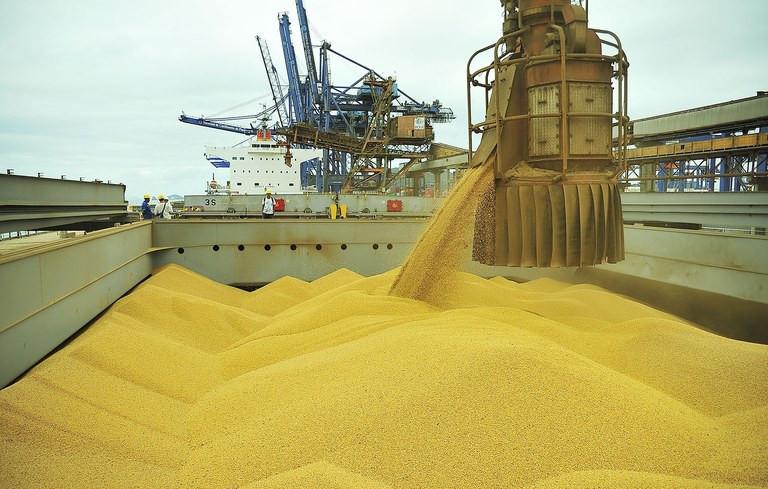 A quantidade de soja em grão e milho embarcada foi significativa em agosto ( Foto: Ivan Bueno APPA)