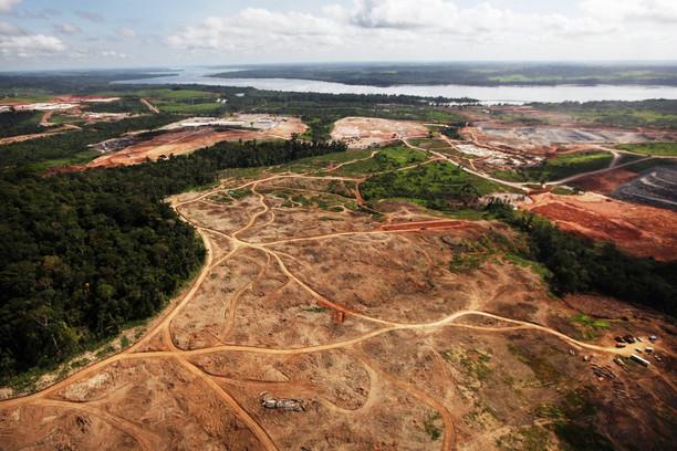 Resultado de imagem para O desmatamento na Amazônia cresceu 30% no ano passado e é o pior resultado desde 2008