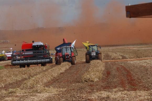 IBGE: Safra de grãos brasileira será recorde e as previsões de setembro aumentaram tanto em relação à produção quanto à área plantada (Arquivo/Agência Brasil)