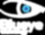 Blueye Technology Apputveckling logga