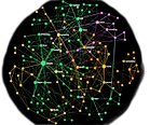 Network_edited.png