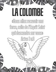 corel colombe.jpg