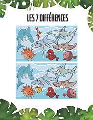 Le_poisson_et_la_pièce-_jeu.jpg