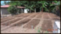 Jardin communautaire de Bella Vista