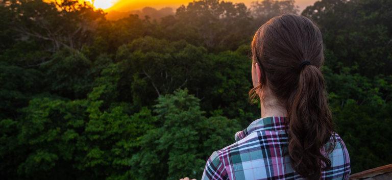 Canopy Tower Posada Amazonica.jpg
