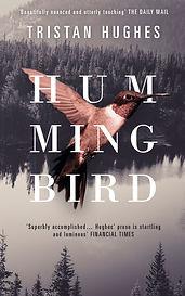 Hummingbird byTristan Hughes