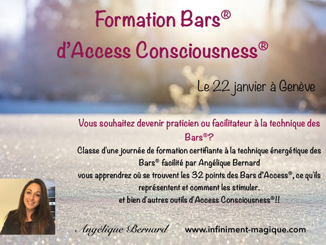 Formation Bars® d'Access Consciousness®