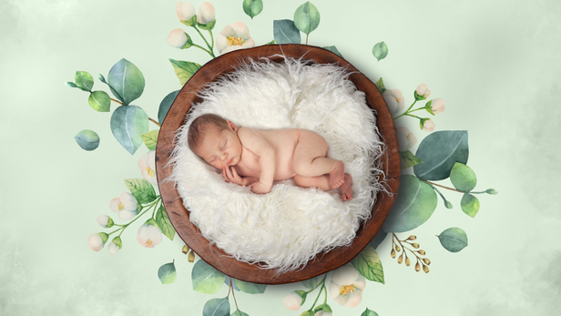 Orchid Isle Photography - Babies