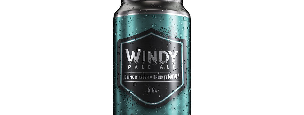 Windy Pale Ale - 330ml- Arel Brewing Project
