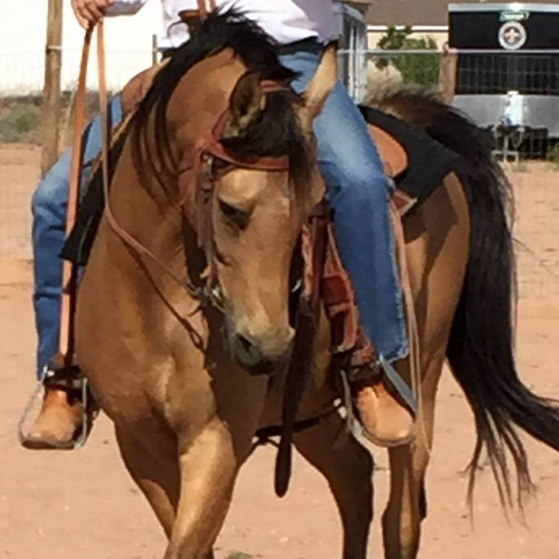October Private Riding Clinic