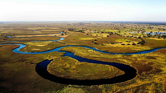 Okavango Delta Aerial View.jpg