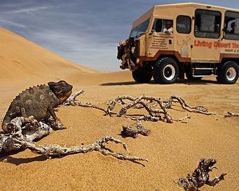 Living Desert Tour.jpg