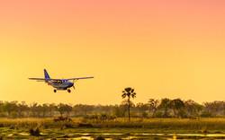 Survol Delta Okavango Avion Sunset
