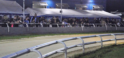 From the centre of the track in the dark8.jpg
