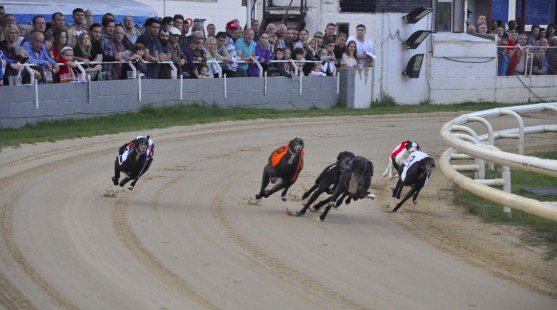 Racing 6.jpg