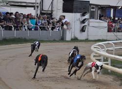 Savana Simones Race.jpg