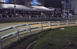 From the centre of the track in the dark7.jpg