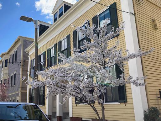 85 Eutaw Street, Unit 2, East Boston