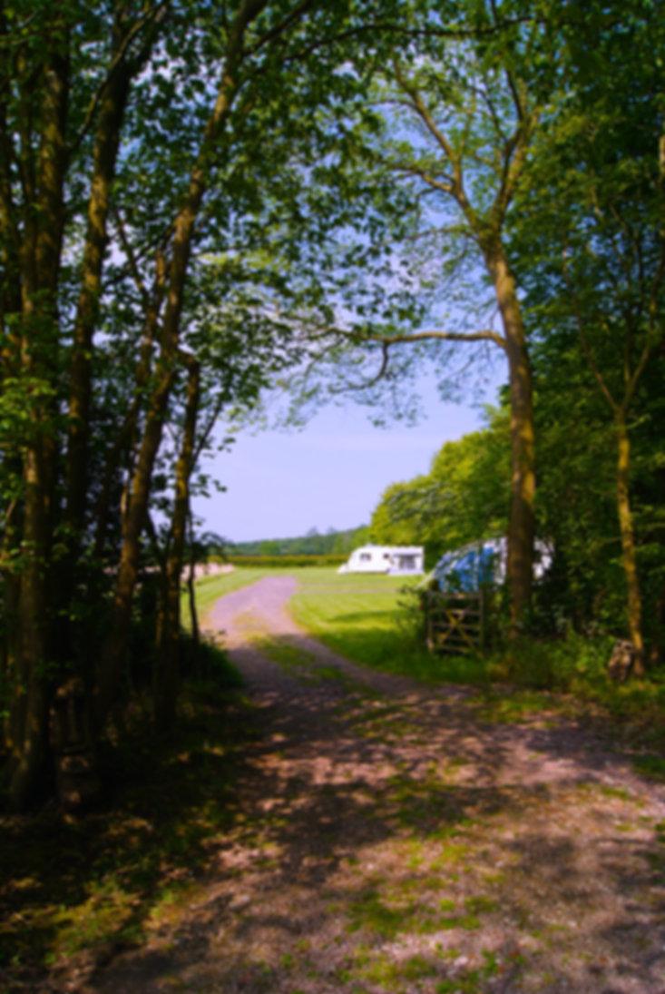 Peakhill Farm's Caravan site Sheeps Meadow