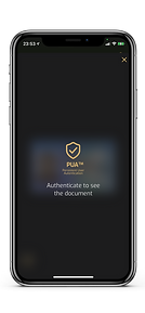 invisible-ink app PUA Documents iphone.png