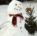 sneeuwpop_maken.jpg