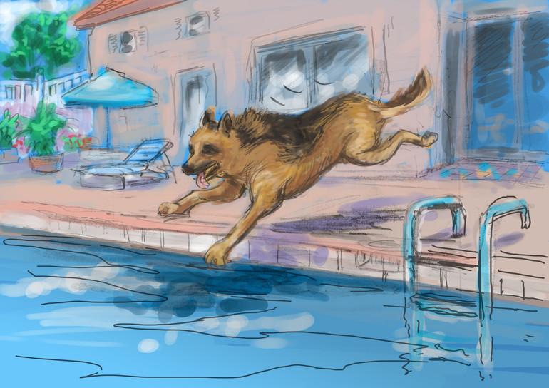 pool_1Color.jpg