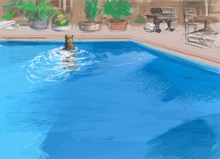 pool_5Color.jpg