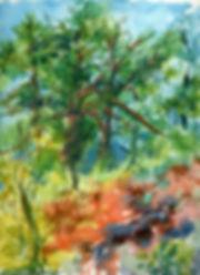 tree002 2.jpg