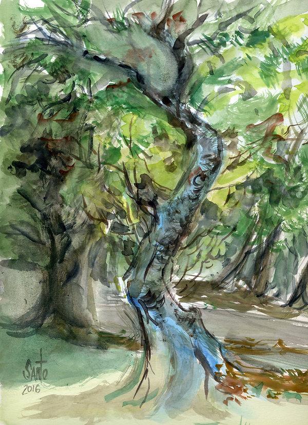 tree004.jpg