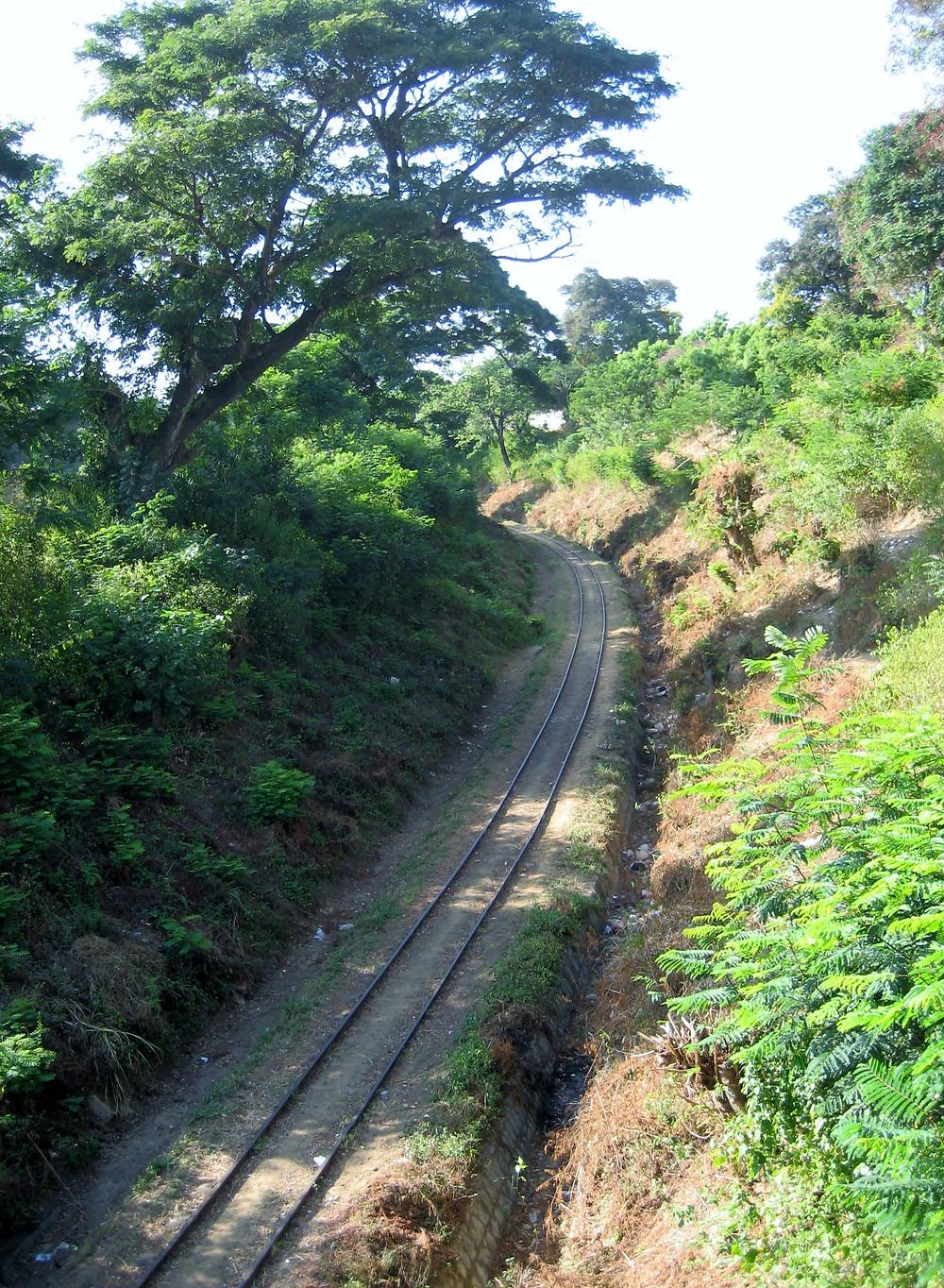 The Railway Cutting