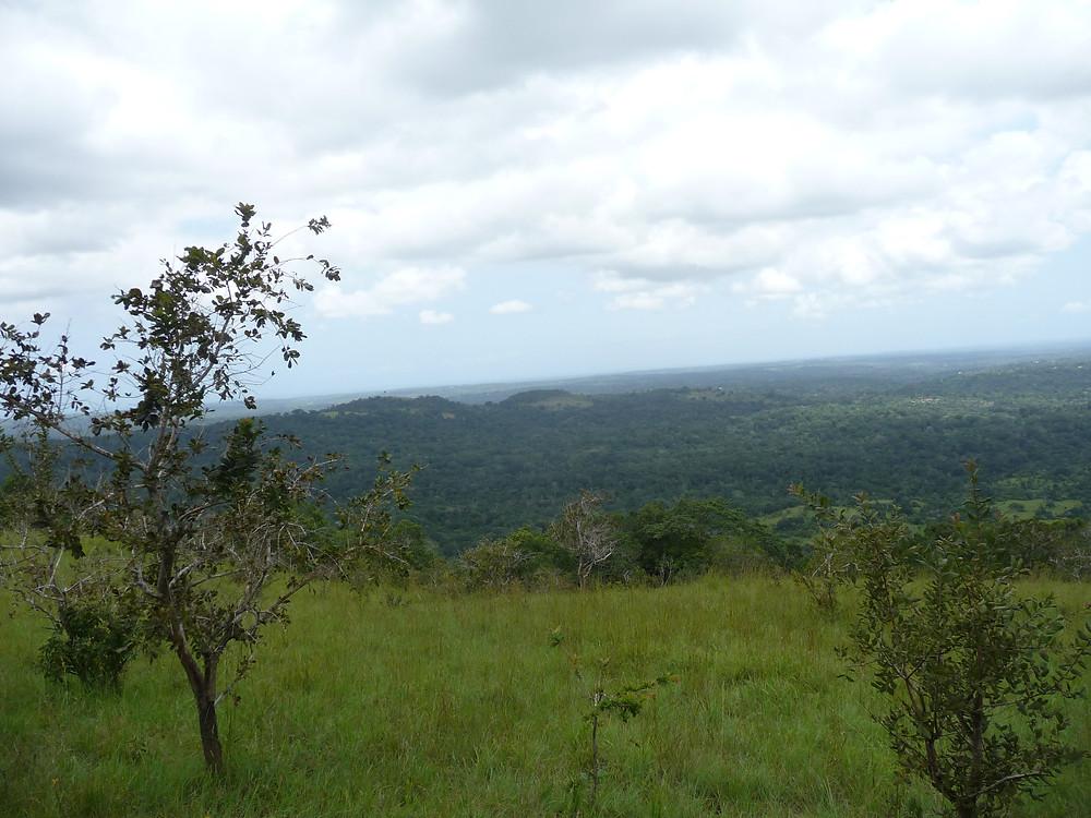 View from Mwele Mdogo