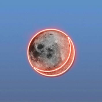 카멜 - 달모양
